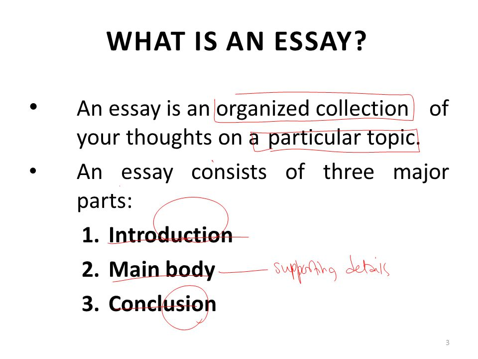 3 main part essay An easy way to remember the parts of a body paragraph is to think of them as containing the meat of your essay: m ain idea the part of a topic sentence that states the main idea of the body paragraph.