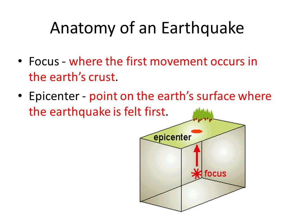 Anatomy of an Earthquake