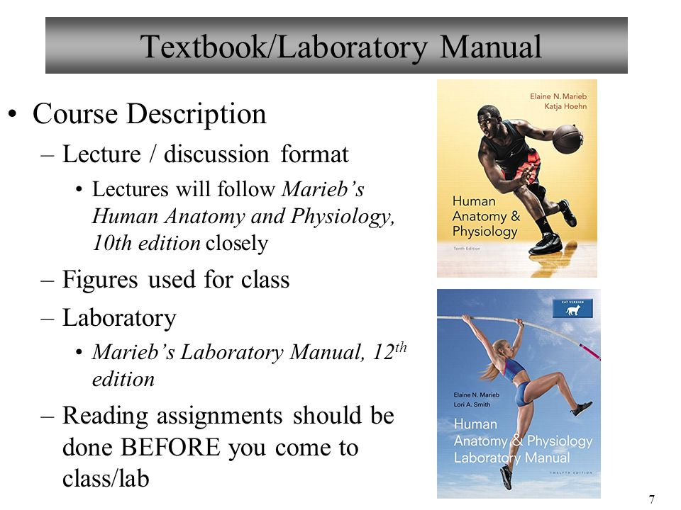 introduction to anatomy and physiology marieb Content notes and review of lecture material for anatomy & physiology i & ii en marieb, human anatomy & physiology, 5 th introduction to anatomy.