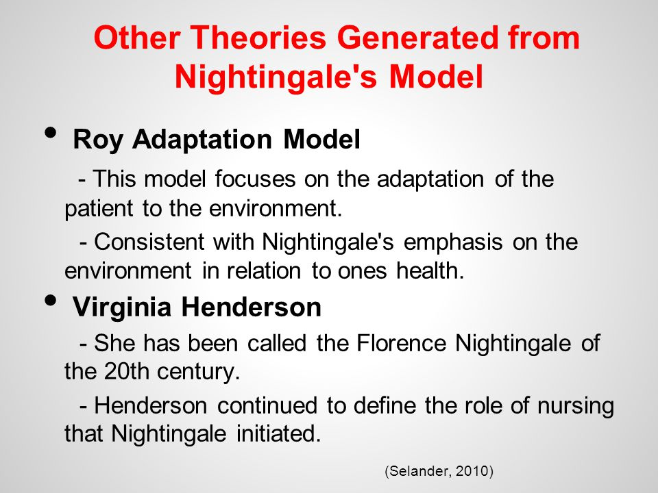 florence nightingale environmental model