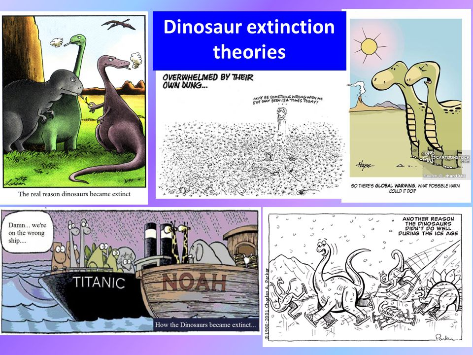 theories for the extinction of dinosaur The extinction of the dinosaurs started in the cretaceous period, around 65 million years ago, and caused the loss of up to 70% of all life on earth the way in which the dinosaurs died is a much argued topic which can be explained by a lot of theories one of which is the asteroid theory.