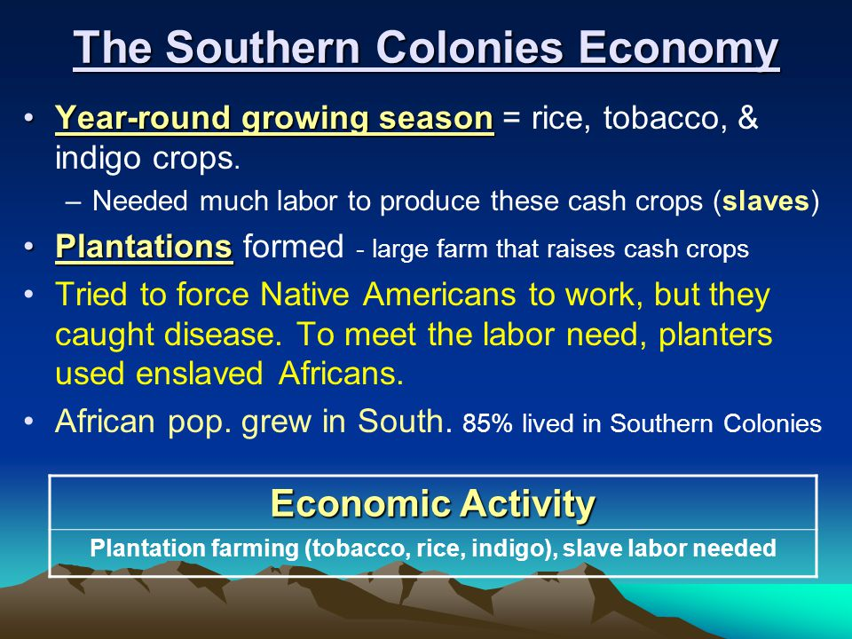 economy for the particular south colonies
