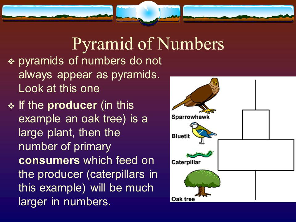 Pyramid of Numbers pyramids of numbers do not always appear as pyramids. Look at this one.