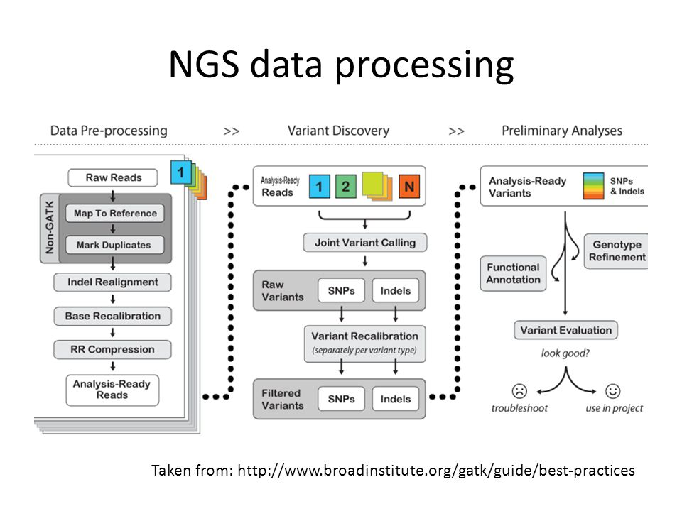 NGS data processing Okay so now we're finally ready to start on the pre-processing steps of the NGS processing work flow.