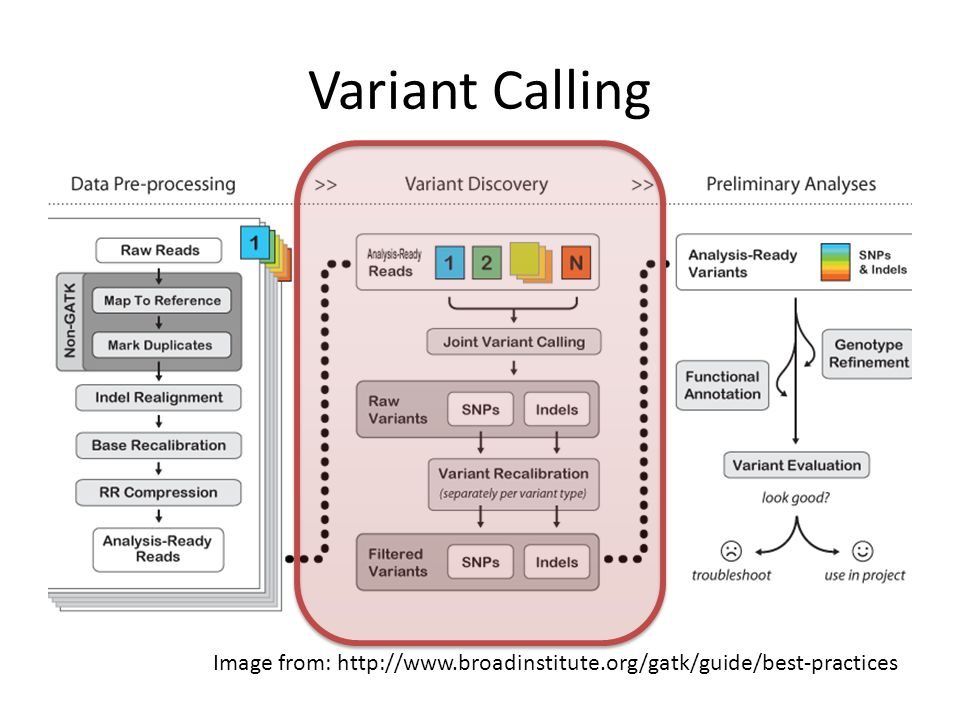Variant Calling . Image from: