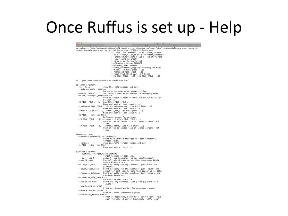 Once Ruffus is set up - Help