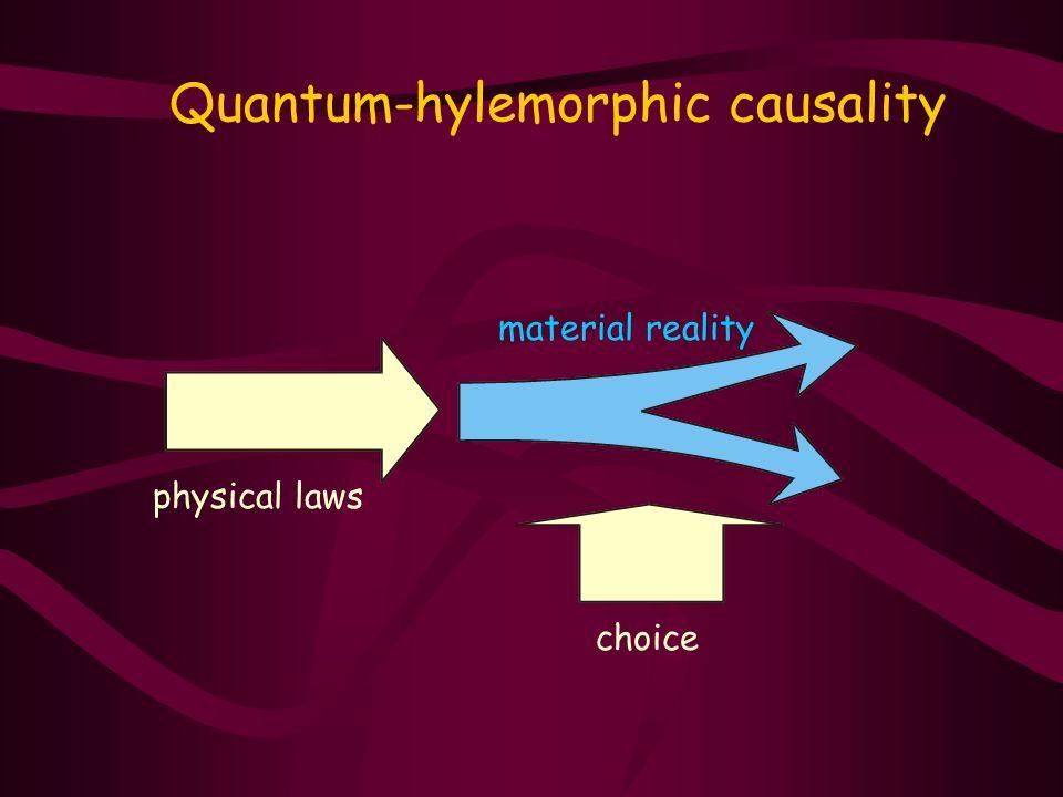 Quantum-hylemorphic causality