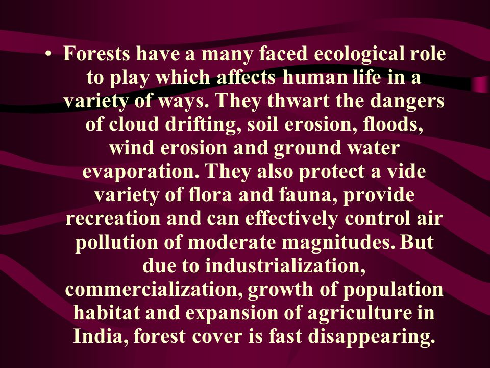 Forests have a many faced ecological role to play which affects human life in a variety of ways.