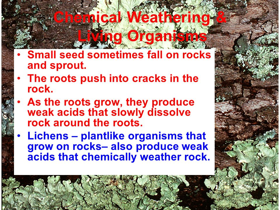 Weathering, Erosion, and Soil Formation. - ppt download