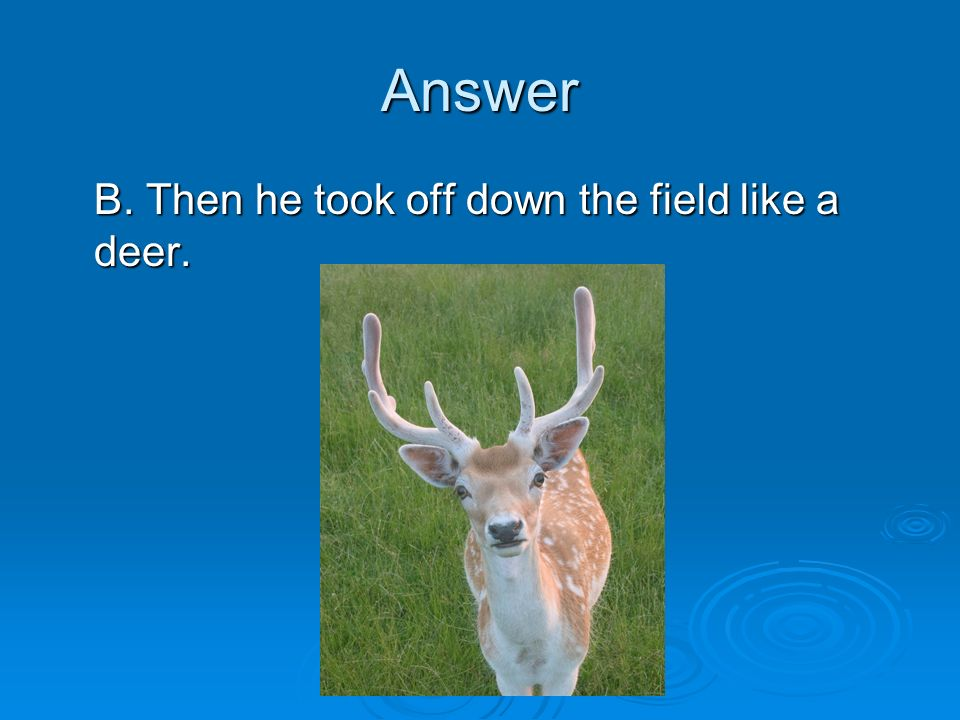 Answer B. Then he took off down the field like a deer.