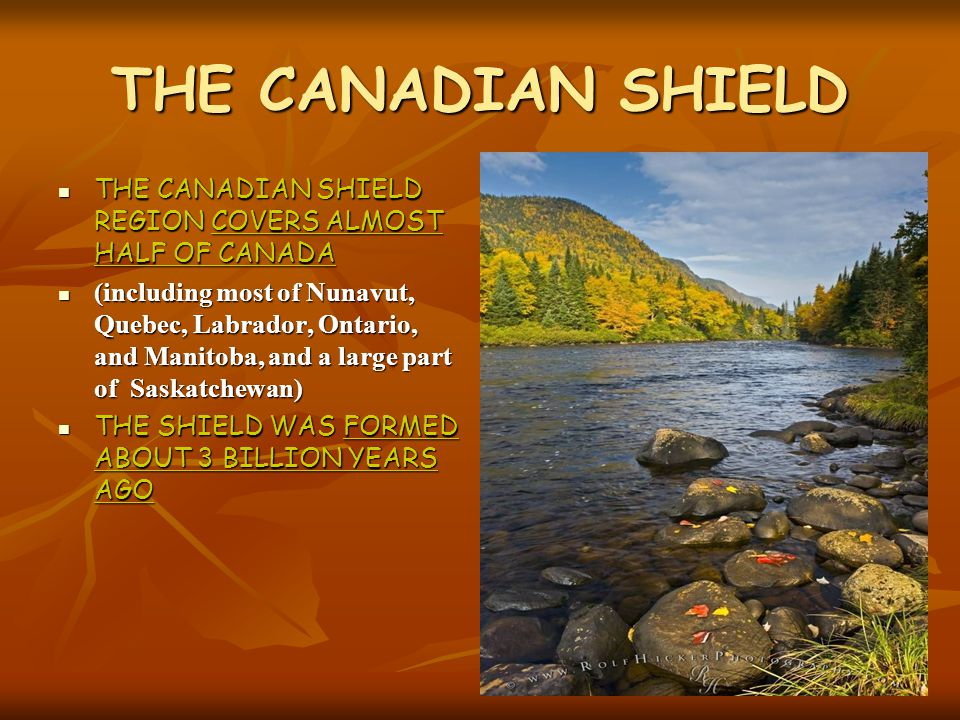 THE CANADIAN SHIELD THE CANADIAN SHIELD REGION COVERS ALMOST HALF OF CANADA.