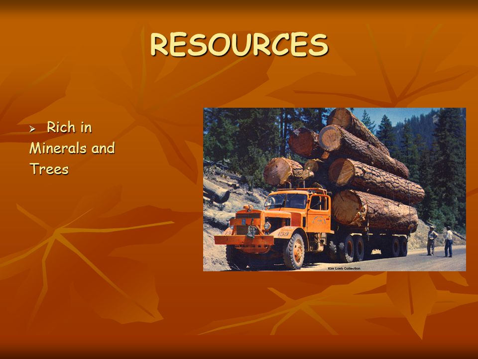 RESOURCES Rich in Minerals and Trees