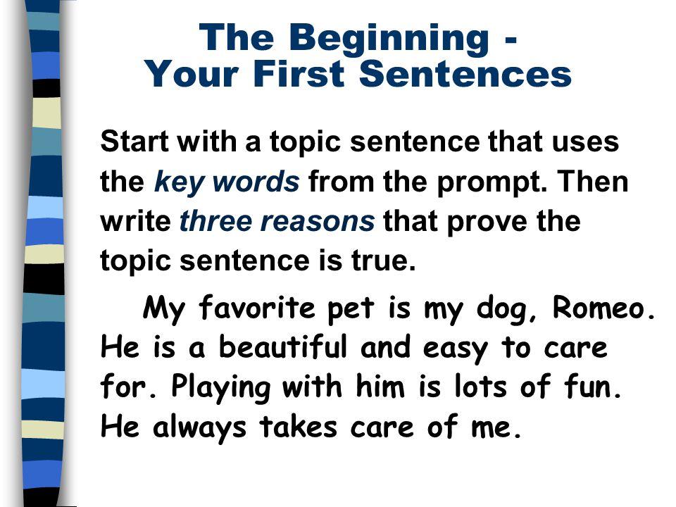 beginning essay sentences