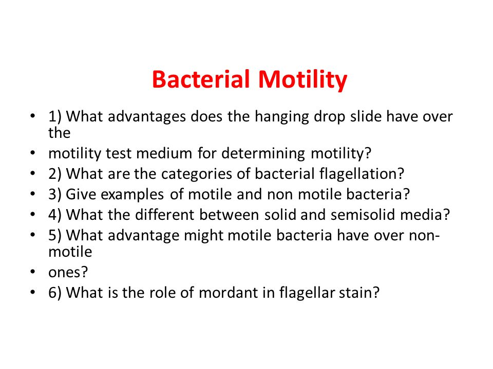 motility test for bacteria pdf