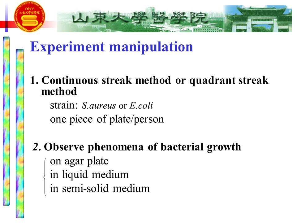 Routine Cultivation Of Bacteria Ppt Video Online Download