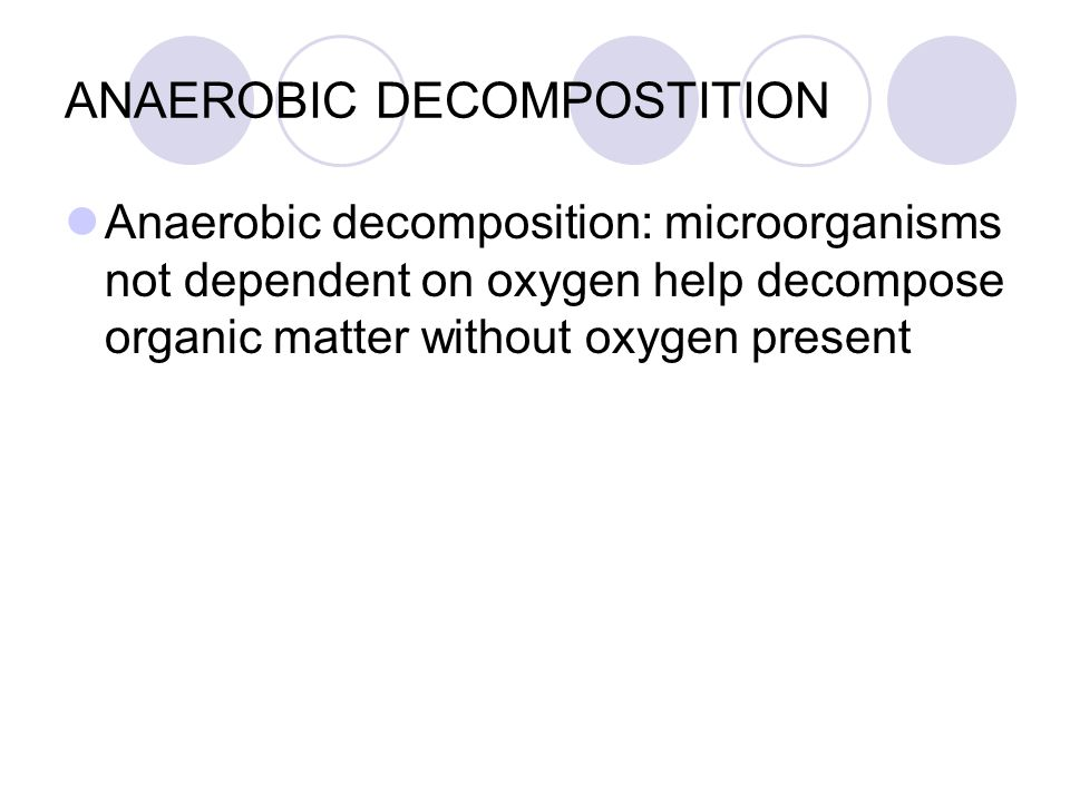 decomposition of organic matter by microorganisms pdf