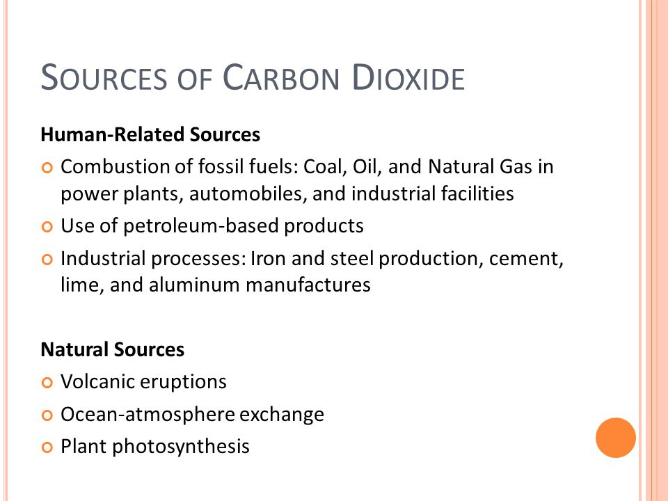 What Are the Main Sources of Carbon Dioxide in the Atmosphere?