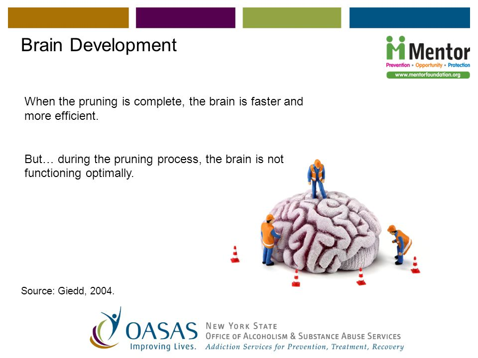 Supplements for toddler brain development image 3
