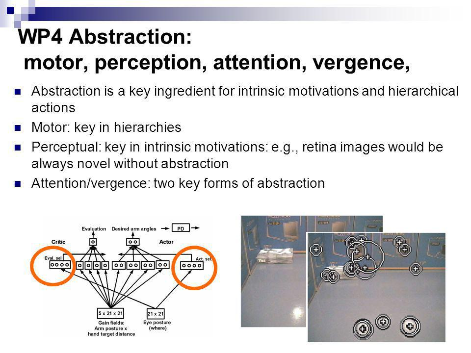WP4 Abstraction: motor, perception, attention, vergence,