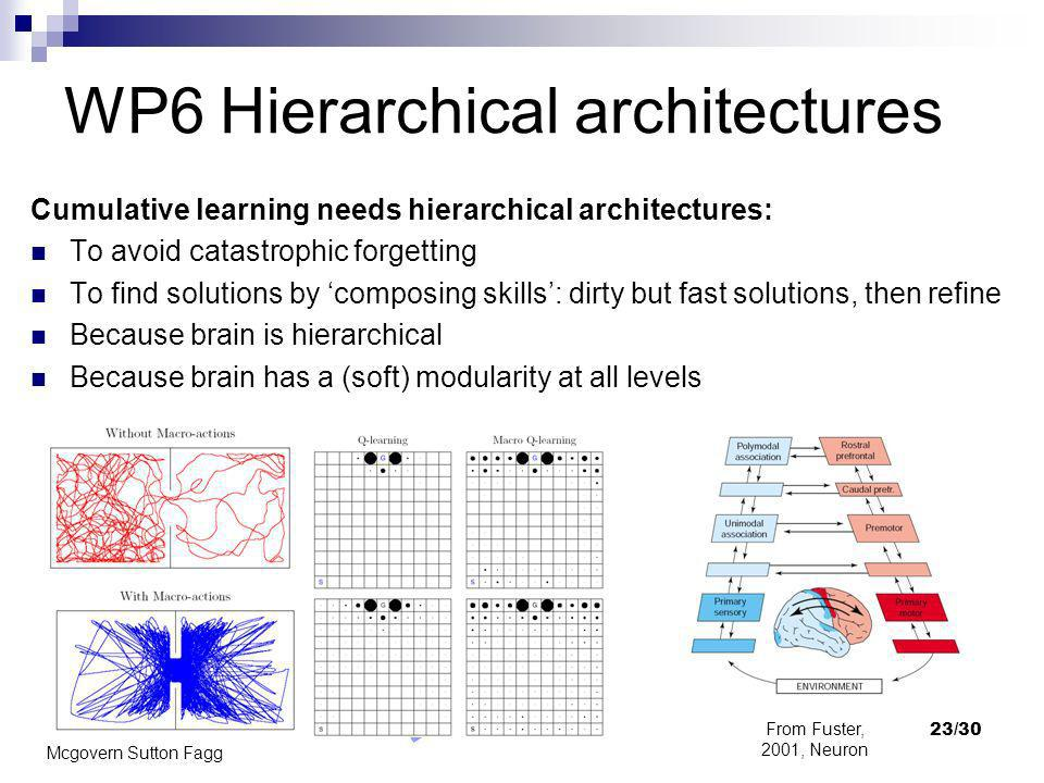 WP6 Hierarchical architectures