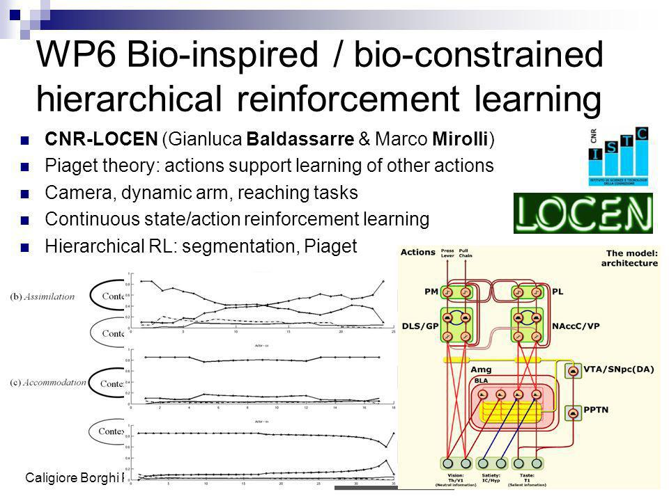 WP6 Bio-inspired / bio-constrained hierarchical reinforcement learning