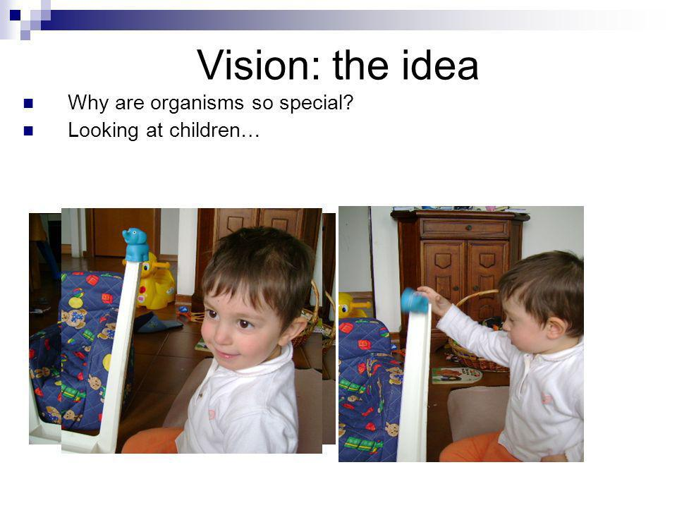 Vision: the idea Why are organisms so special Looking at children…
