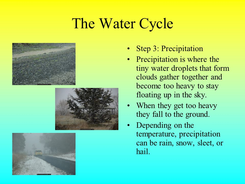 The Water Cycle Step 3: Precipitation