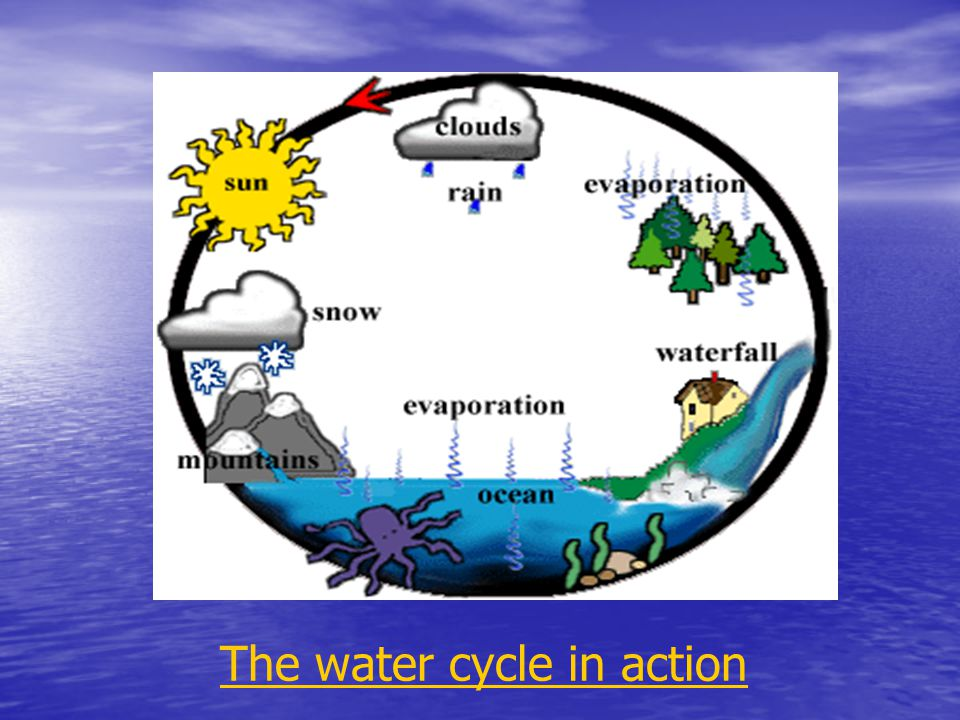 The water cycle in action