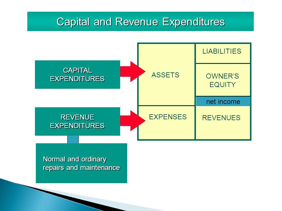 capital and revenue expenditure essay