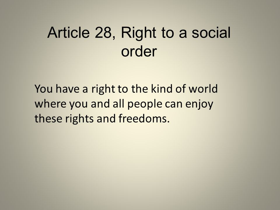 Article 28, Right to a social order