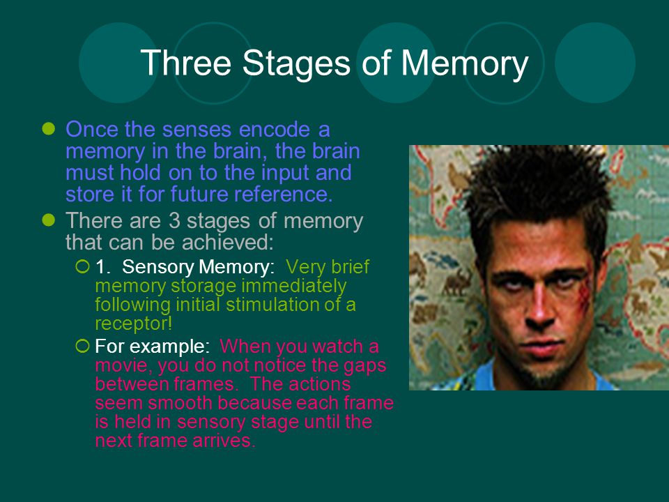 the process of encoding a stage of memory Memory encoding - encoding is the first step in the process of creating a new memory learn how memories are made.