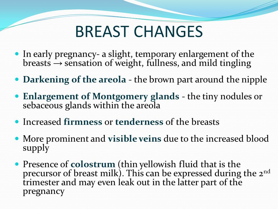 Breast and early pregnancy