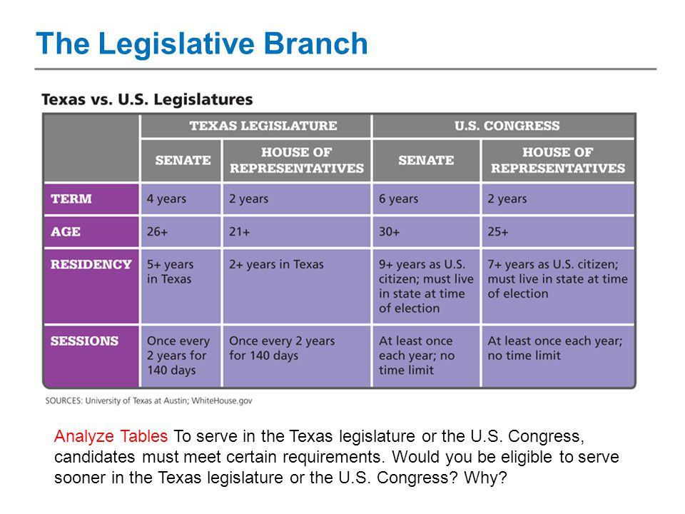 where does the new york legislative branch meet