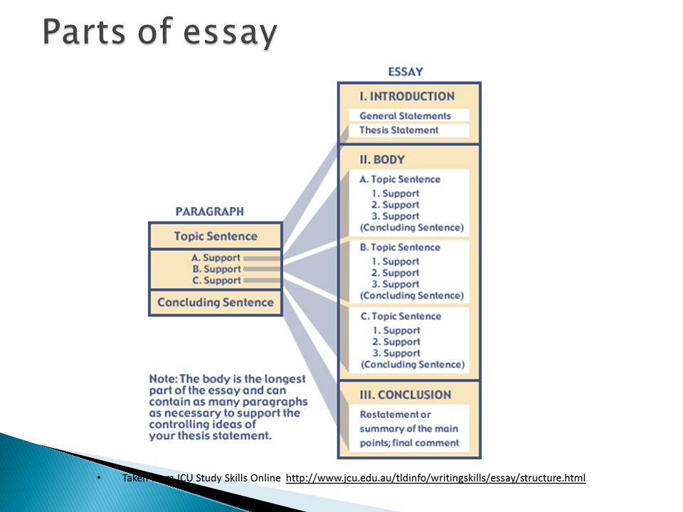 Five paragraph essay parts of