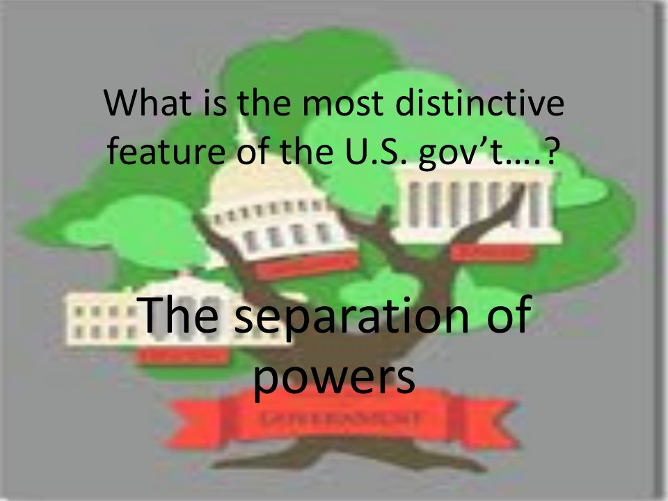 What is the most distinctive feature of the U.S. gov't….