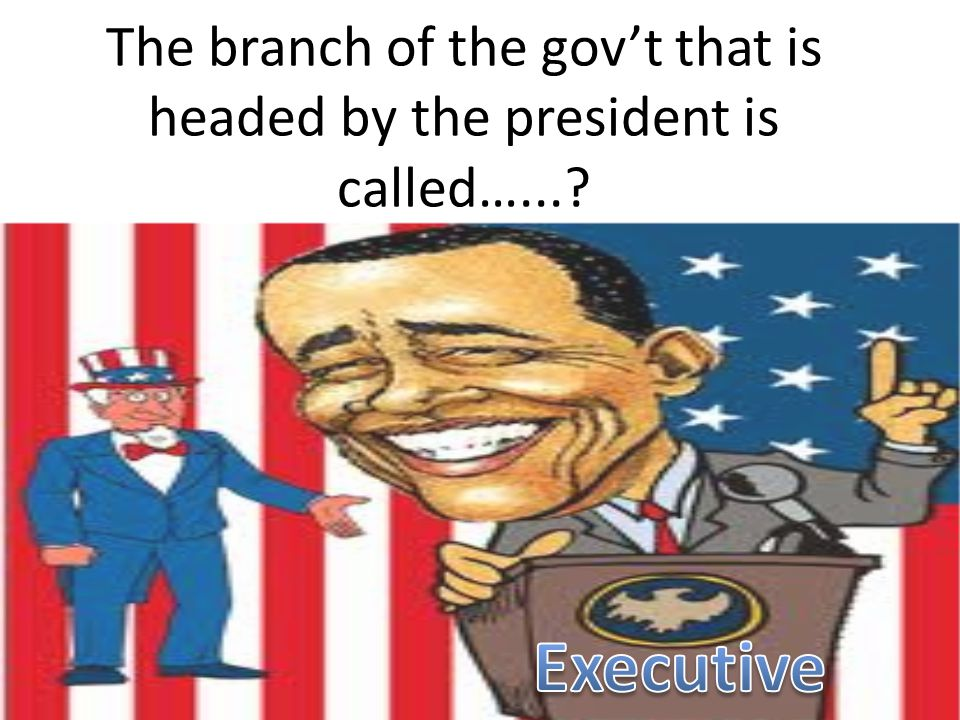 The branch of the gov't that is headed by the president is called…...