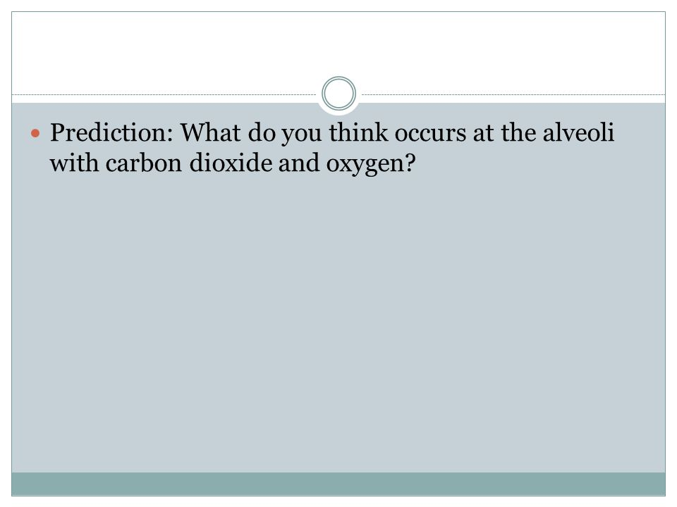 Prediction: What do you think occurs at the alveoli with carbon dioxide and oxygen