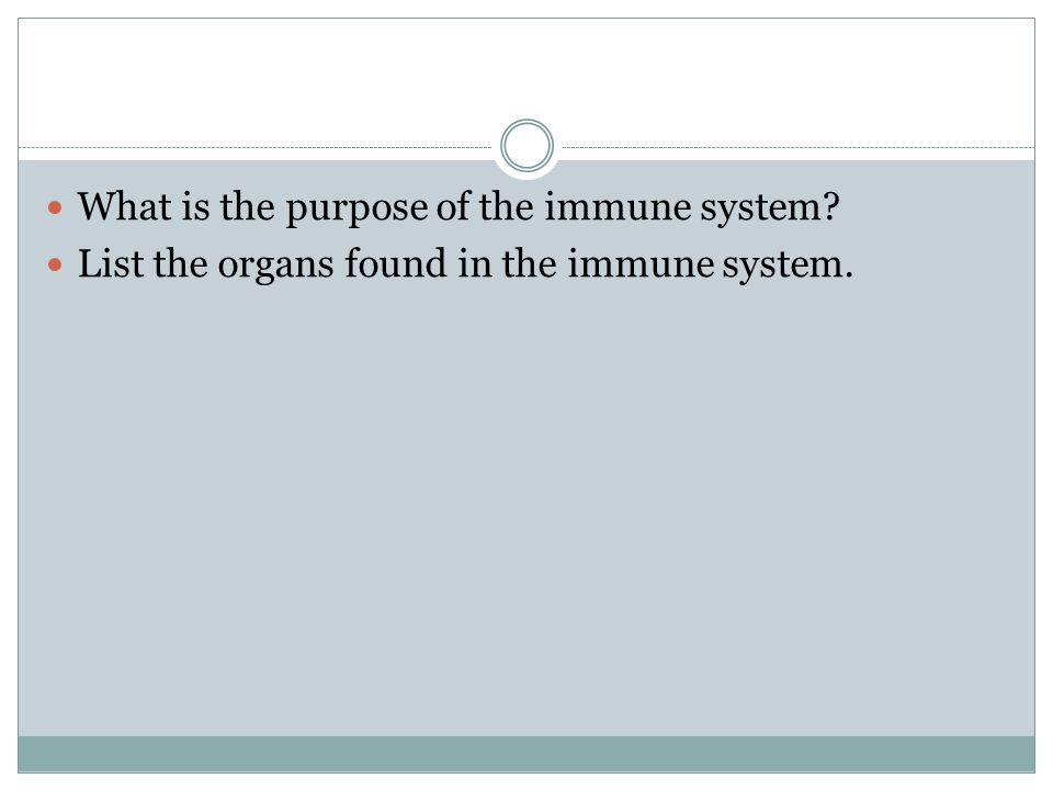 What is the purpose of the immune system