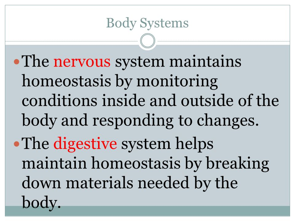 Body Systems The nervous system maintains homeostasis by monitoring conditions inside and outside of the body and responding to changes.