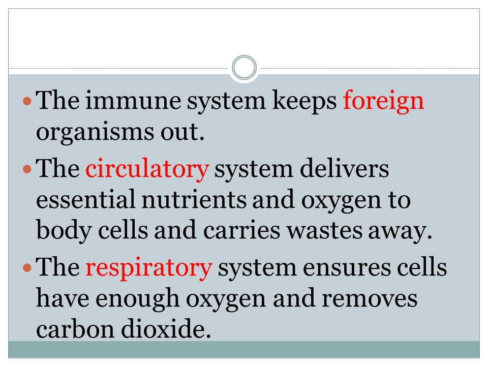 The immune system keeps foreign organisms out.