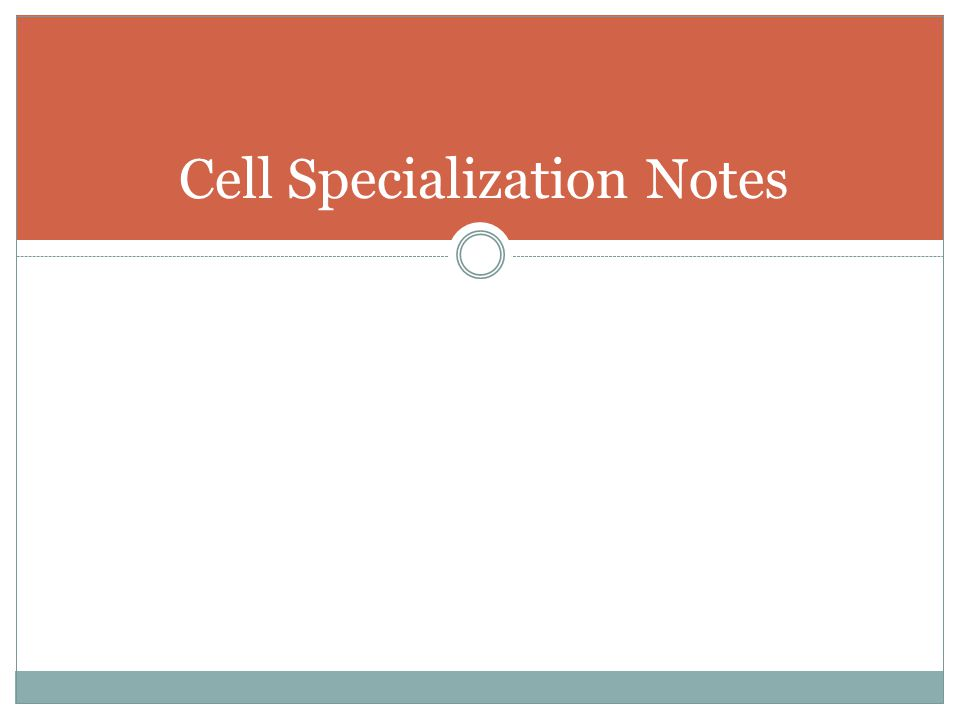 Cell Specialization Notes