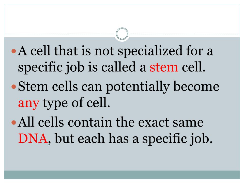 A cell that is not specialized for a specific job is called a stem cell.