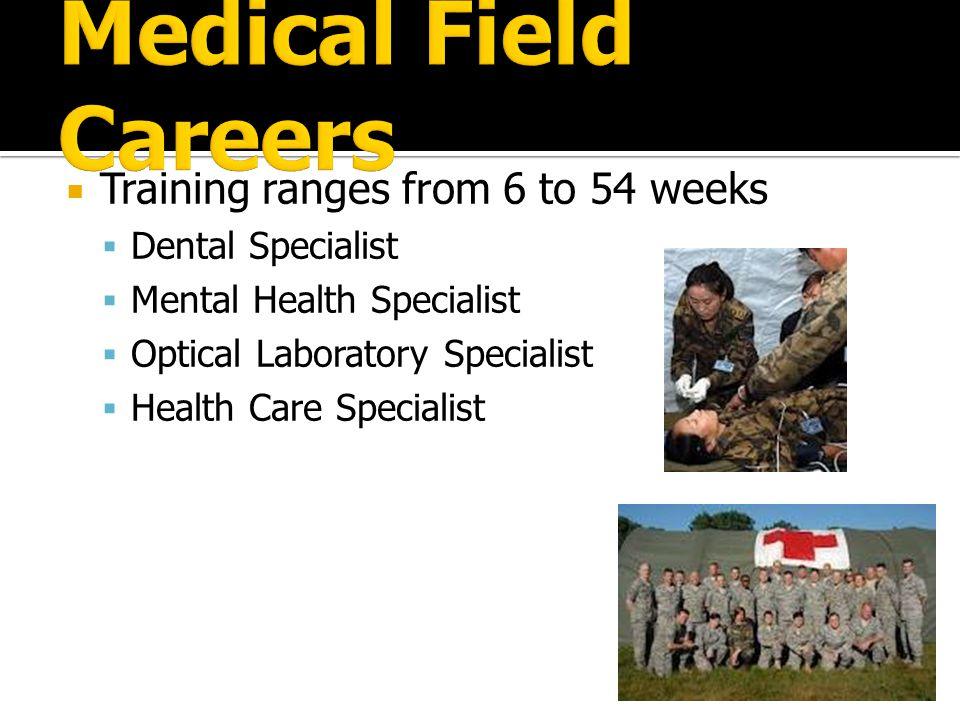 a report about career in the field of medicine and health care Many health care support jobs require no more than an associate or bachelor's degree or specialized certification while offering good wages, low unemployment and plentiful job openings click on to discover the best jobs of 2017 in the field of health care support.