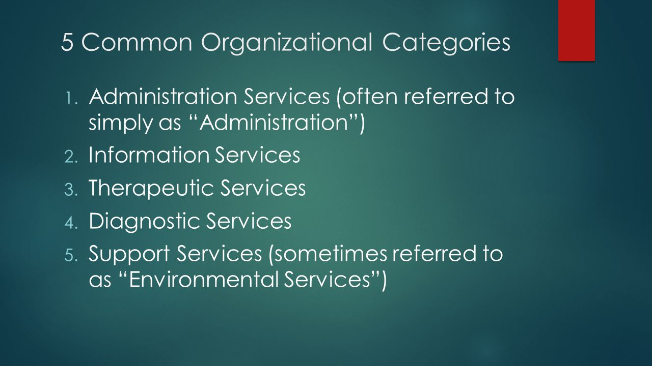 5 Common Organizational Categories