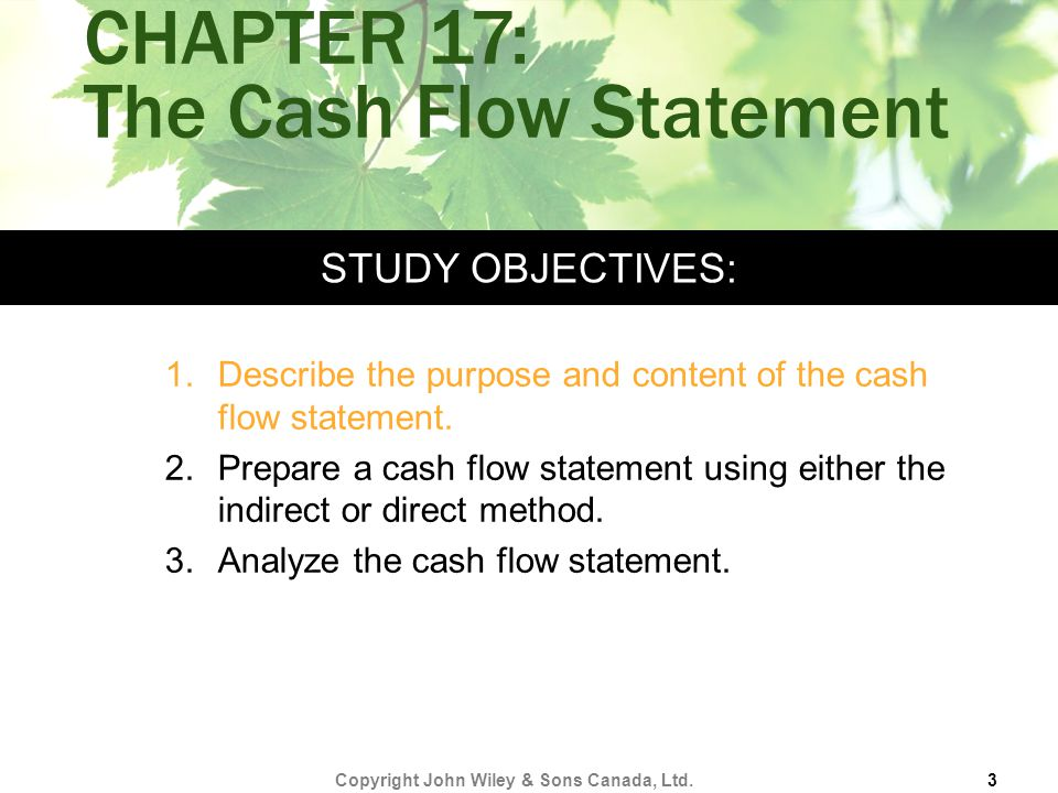 CHAPTER 17: The Cash Flow Statement