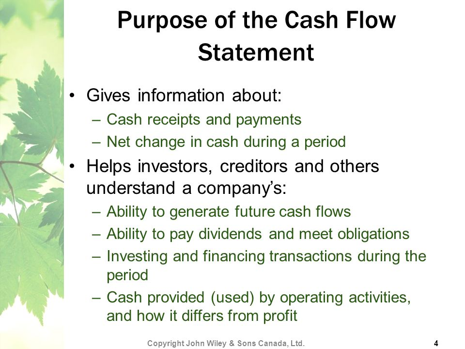 Purpose of the Cash Flow Statement