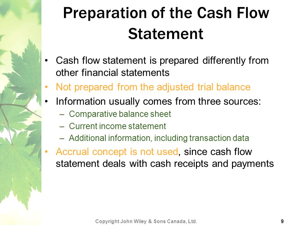 Preparation of the Cash Flow Statement