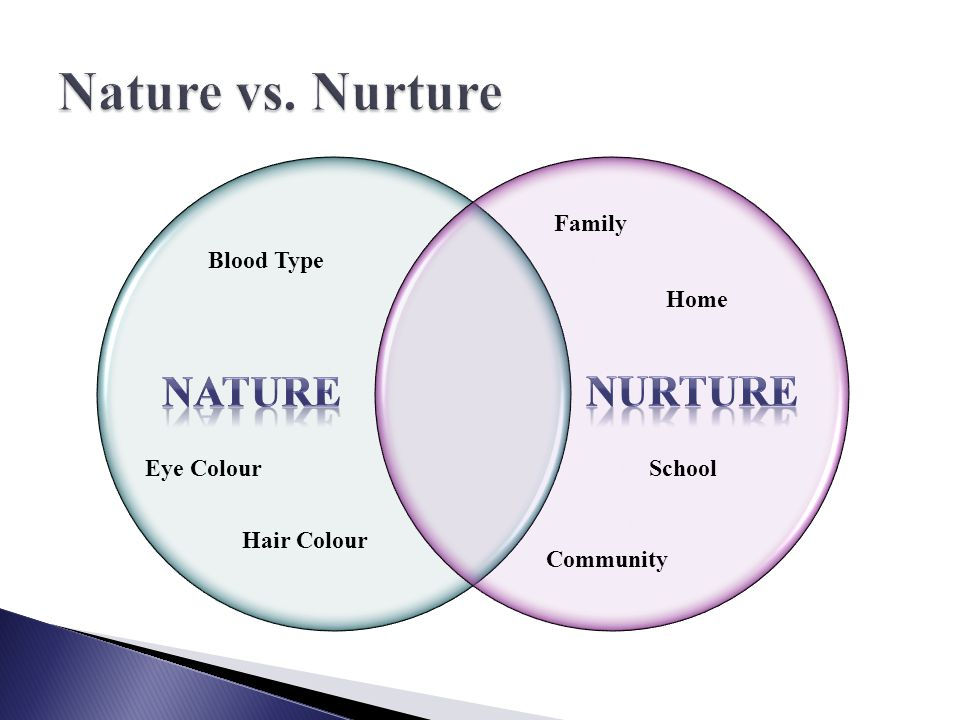 Nature Vs Nurture Influence On Child Development