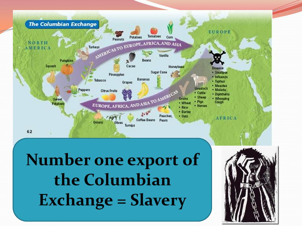Number one export of the Columbian Exchange = Slavery
