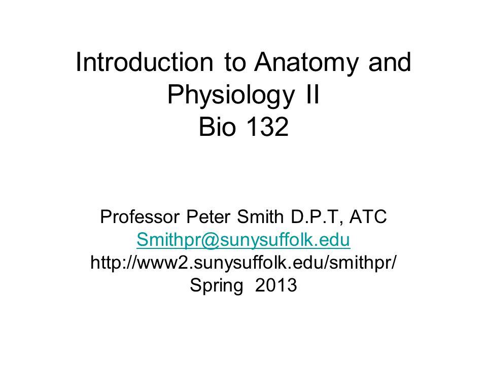 Atemberaubend Anatomie Und Physiologie 1 Und 2 Online Kurs ...